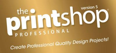 The Print Shop 5.0 – A Guide to Creating a Perfect Brochure for your Business